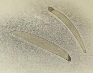 Wonderstripes auf gelblicher Pappe mit MAC Puderlidschatten. Stripes sind nicht überschminkbar. Charakteristisch: Knicke in den Enden von Grobmotoriker-Autorin ;-)